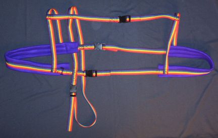 Rainbow w/ Purple Padding Harness